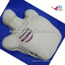 Mannequin de drainage pleural ISO, Pneumothorax Décompression, drainage thoracocentèse
