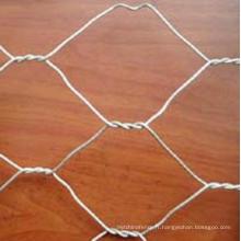 Matériaux de construction Filetage à maille hexagonale galvanisée (Anjia-105)