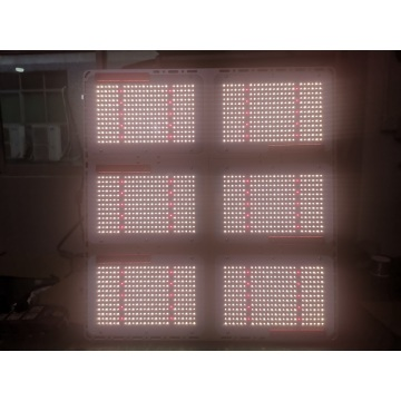 600W Tinggi PPFD Led Grow Light qb288 3500k