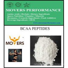 Sports Nutrition Bcaa Peptides 2: 1: 1