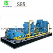 Stationärer CNG-Gas-Kompressor für CNG-Mutter-Tankstelle