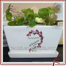 Белый глазурованный керамический горшок для цветов