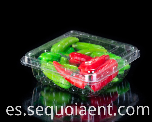 Disposable Clamshell plastic box with blueberry