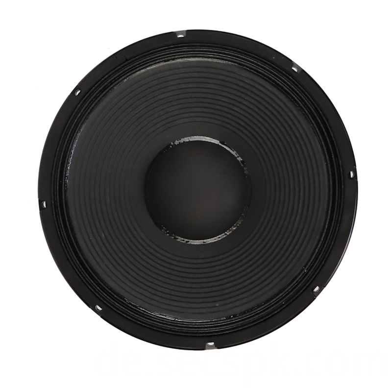 High Power Concert Speaker