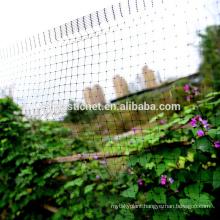 100% virgin PP black green square extruded plastic bird netting