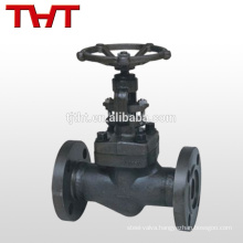 difference between gate valve & 800lb forged steel flanged globe valve