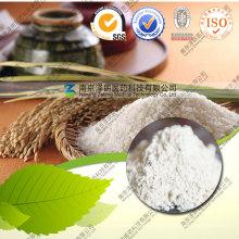 Nahrungsergänzung Konventionelles und organisches Reisprotein