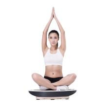 Corps de produits de soins de santé amincissant le massage de vibrateur de Massager