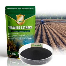 customised organic seaweed Enzymatic Hydrolysis Water Soluble 100% Seaweed Extract