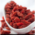 Dried Medlar From Ningxia