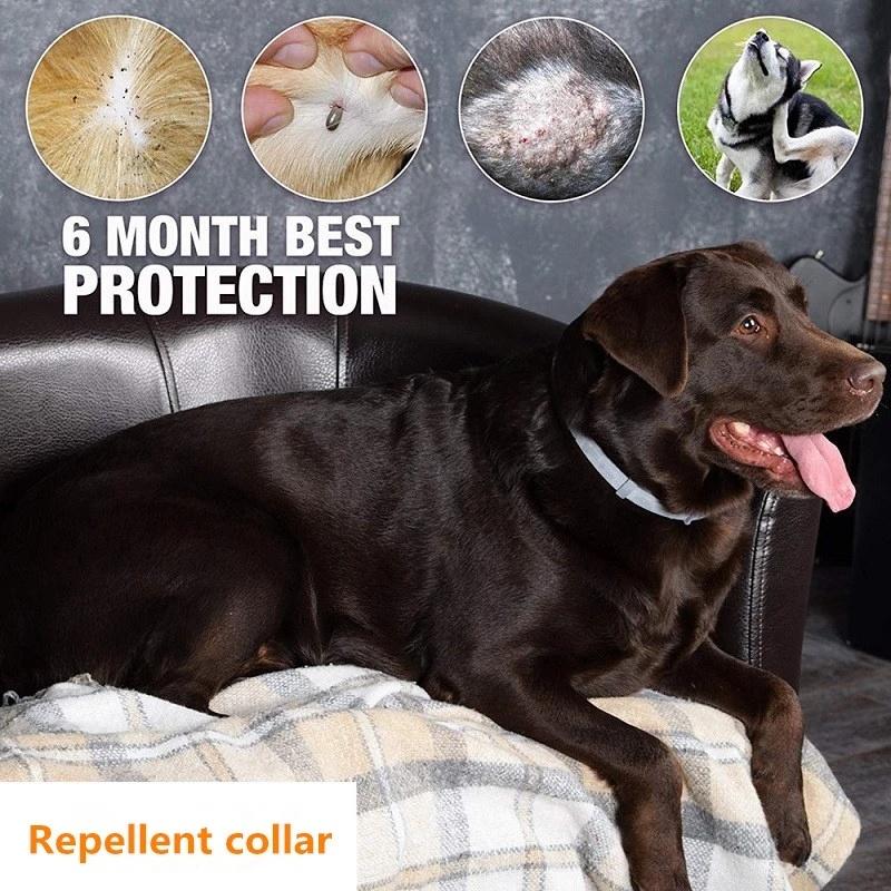 Pet Insect Repellent Dog Cat Flea Collar