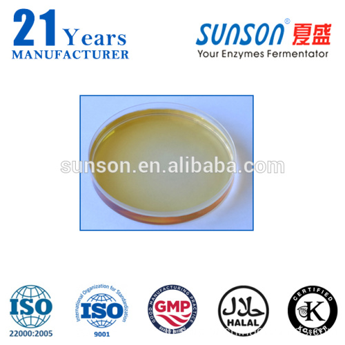 Xylanase enzyme used for beer brewing industry XY22L