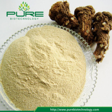 100% Naturligt Angelica Sinensis Root Extract Powder