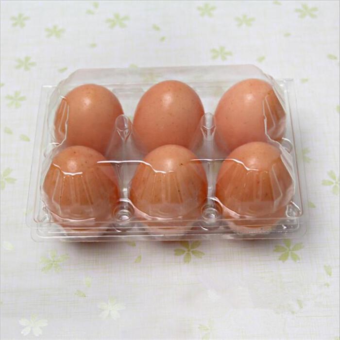 Blister Plastic Egg Turning Tray