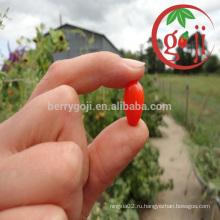 Сертификат Органические ягоды Goji Оптовая торговля