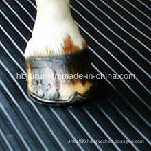 Shock Absorption Horse Rubber Matting for Floor