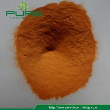 Spray de jugo de Goji Berry Dried Powder
