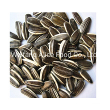 Wholesale 361 Sunflower Seeds All Kinds of Cheap Price Sunflower Seeds