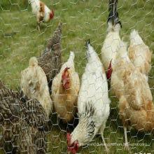 Chicken Wire 50mmx1800mmx25m