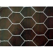 Maillage métallique hexagonal de 30 cm de largeur à 2,0 m Largeur
