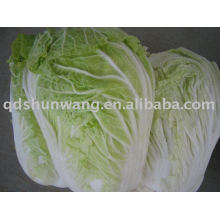 2011 fresh chinese long cabbage 4.0kg
