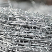 China Low Price Amazon Barbed Wire Fencing Hot Sale