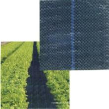 Tissu de couverture de paysage UV de tissu de couverture de l'agriculture 3% / paysage