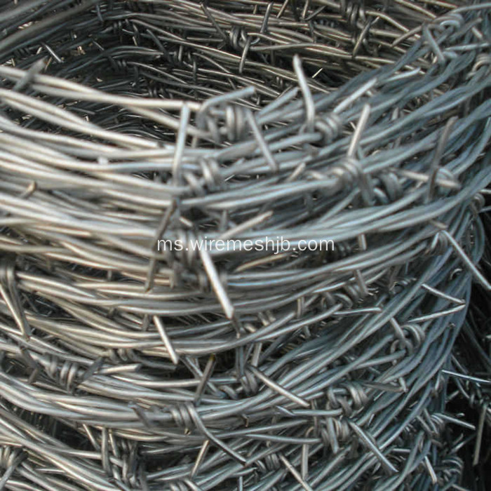 Twisted Galvanized Double Strand Twisted Twisted Twist