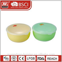 Kleine Kunststoff-Lebensmittel-Container-Box