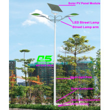 WPSRR-8602 3~15m Municipal Road Hot DIP Galvanized Steet Light Pole style
