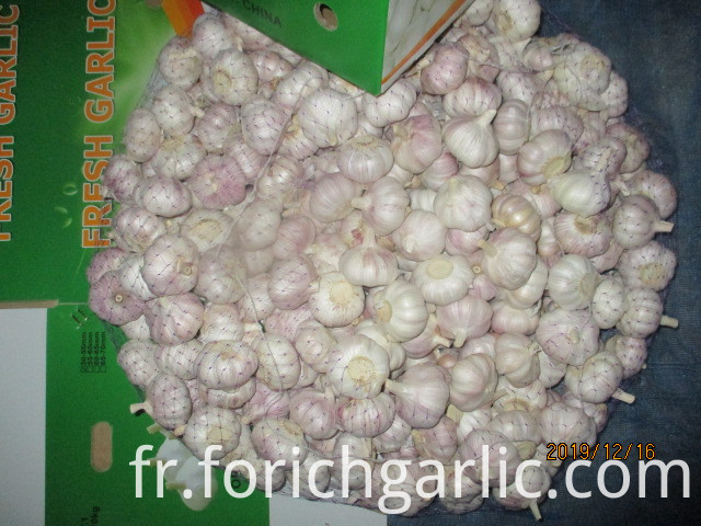 How To Preserve Garlic Bulbs