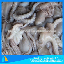 Frozen long leg octopus