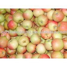 Pomme de gala rouge fraîche