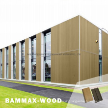 WPC Outdoor Ceiling Board Wood Composite Wood Look Cladding Panel Cheap Price Co-Extrusion Composite Wood Wall