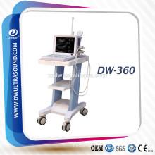 portable ultrasound bladder scanner with convex probe