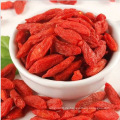 Ningxia Goji Beere (konventionell) Chinesisch Wolfberry