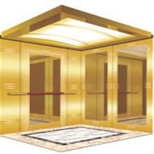 Fjzy-ascenseur (FJ8000-1) ascenseur passager Fjzy-230