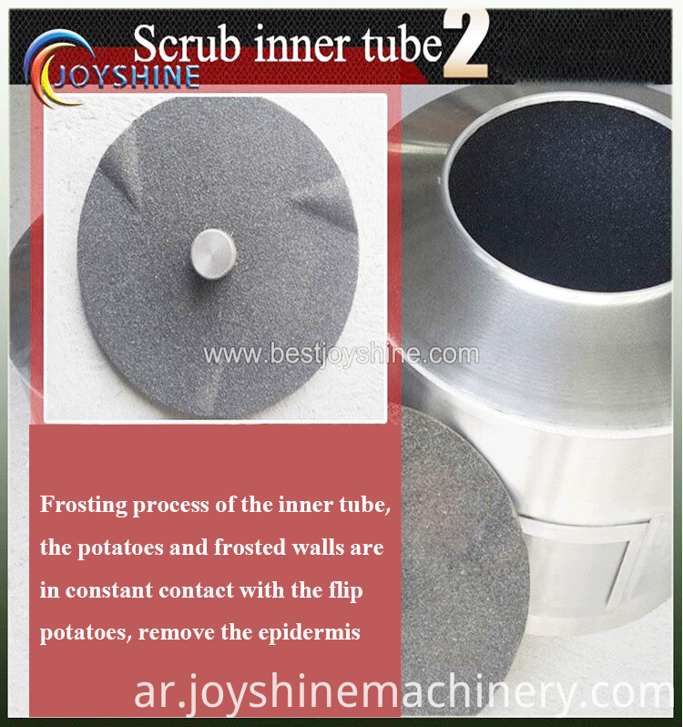 potato washing and peeling machine (12)