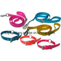 Produto Pet Leash Dog Dog Collar Pet Supply