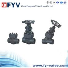 Válvulas de Porão Forjado A105