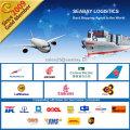 Porfessional Versand Logistik Service Von Shenzhen / Shanghai / Ningbo / Guangzhou nach Indien
