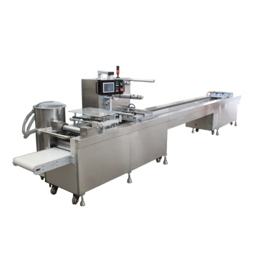 Disposable Syringe Blister Packaging Process Packing Machine