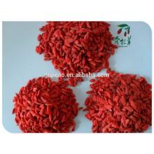 Großhandel getrocknete organische Mispel, Goji-Beeren, zertifizierte Bio-Goji-Beeren NOP USDA