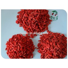 Wholesale dried organic medlar,goji berries,Certified Organic Goji Berries NOP USDA