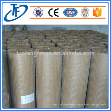 electroplate galvanized welded wire mesh factory