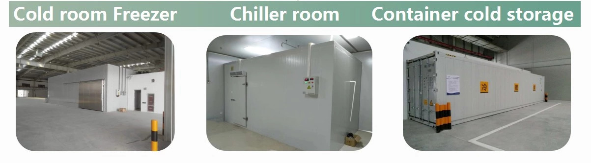 Quick freezing cold room