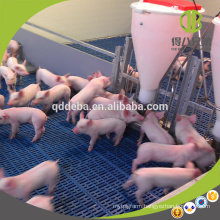Hot Sale Hot Galvanzied Pipe Livestock Equipment Pig Weaner Pening