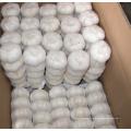 Exportação Nova Colheita Fresh Good Qualit White Alho
