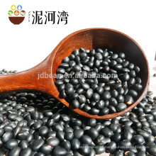 Feijão preto seco para feijões de tartaruga enlatados, pretos
