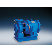 Slz Series Horizontal Centrifugal Pump with Direct Connection